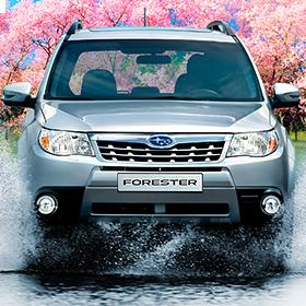 Весенняя рекламная кампания Subaru Forestre