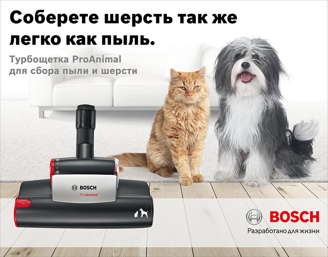 http://mness.net/wp-content/uploads/2016/11/Bosch_pro_animal.jpg