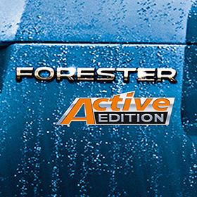 Шильд Active Edition